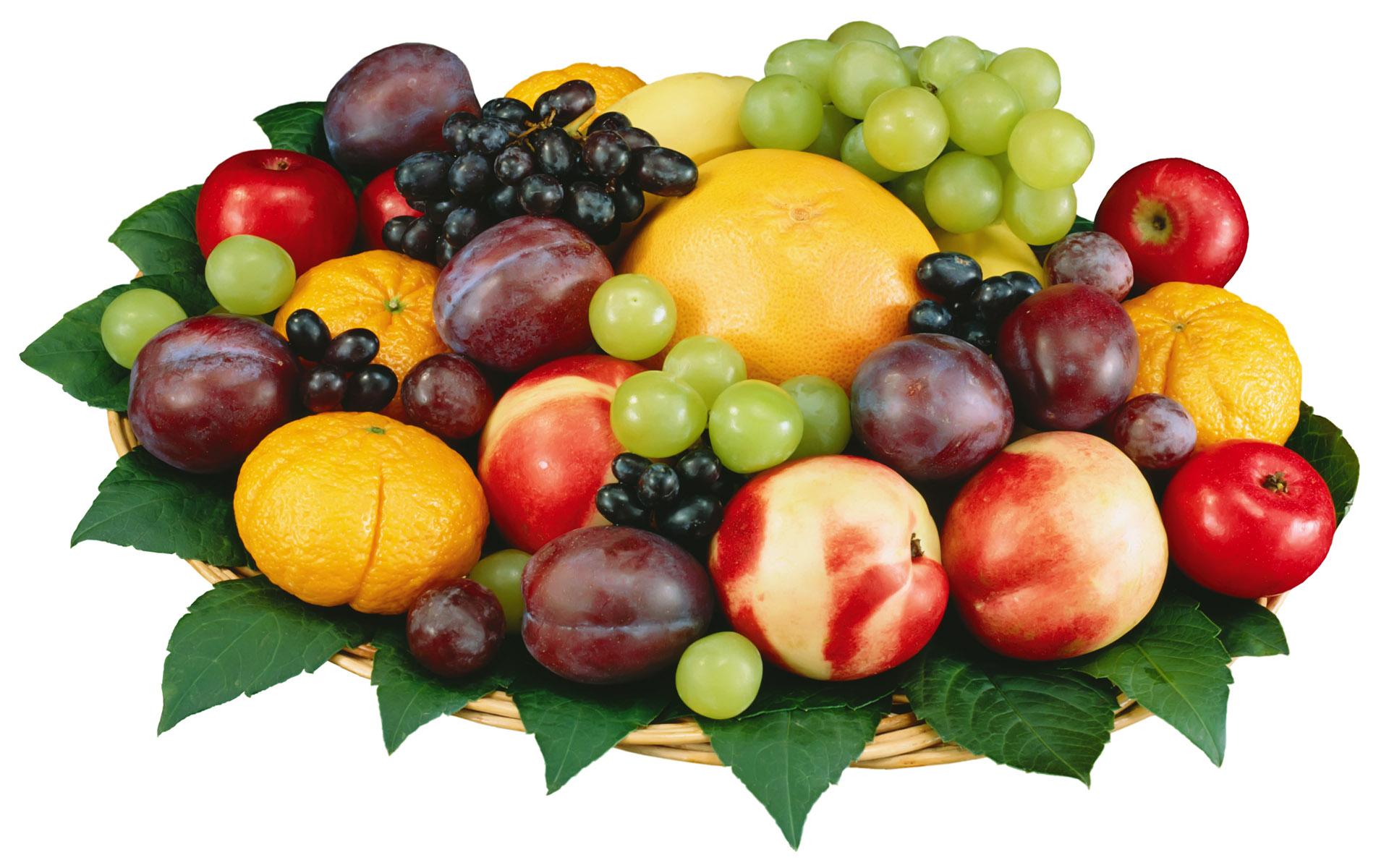 fruit1600_8004.jpg