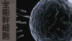 促干细胞疗法