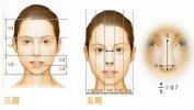 你必须知道的隆鼻美学标准